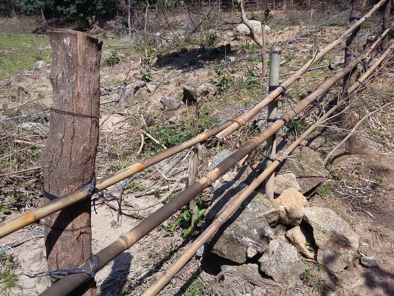 mixed-fence