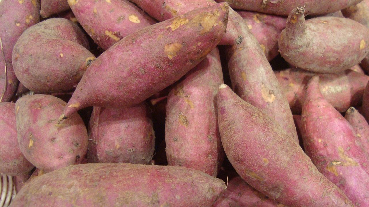 fresh-hk-sweet-potatoes